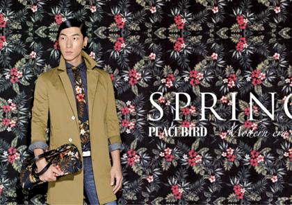 peacebird2[1]